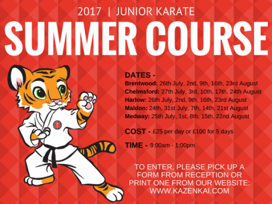 Junior Karate Summer course 2017